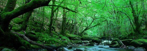 la_france_cote_nature_1
